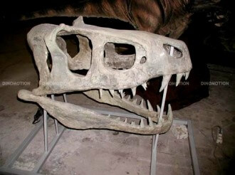 t-rex-scull
