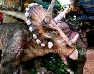 triceratops1